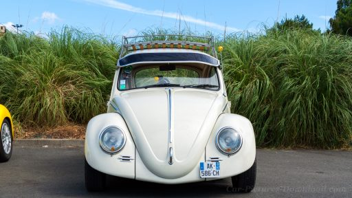 VW Beetle pictures
